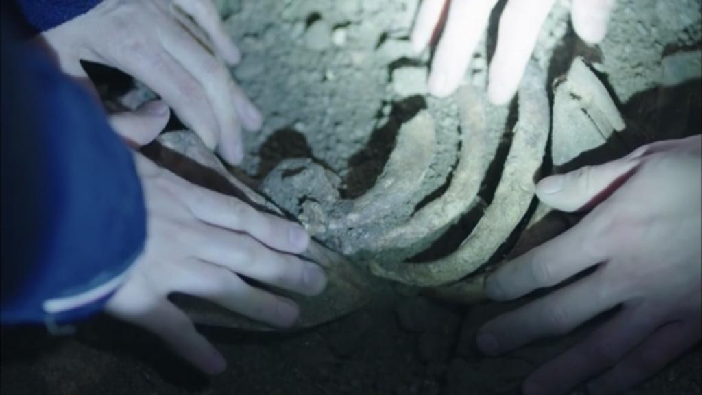 韓国ドラマ「シグナル」12話土の中か人骨が
